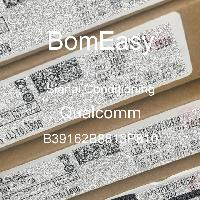 B39162B8813P810 - RF360 Holdings Singapore Pte Ltd